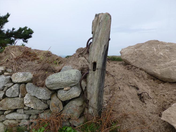Un morceau de l'épave de l'Iris est encore présent dans un talus de champ à Bigole  île de Batz