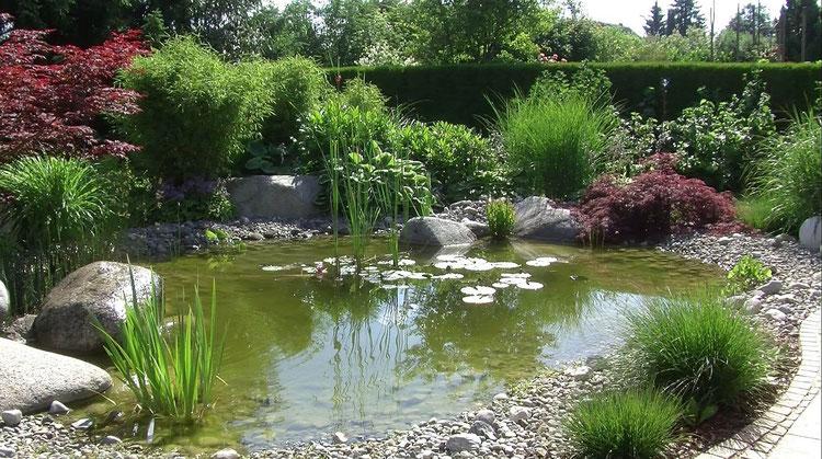 Ein geschwungener Weg begrenzt den Teich. Steine in verschiedenen Größen bedecken die Teichfolie.