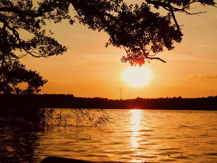 Drewensee, See, Abendsonne, Sonnenuntergang am See