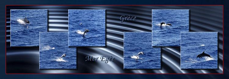 Dauphins jouant avec les vagues provoquées par le bateau entre Rhodes et l'île de Symi...