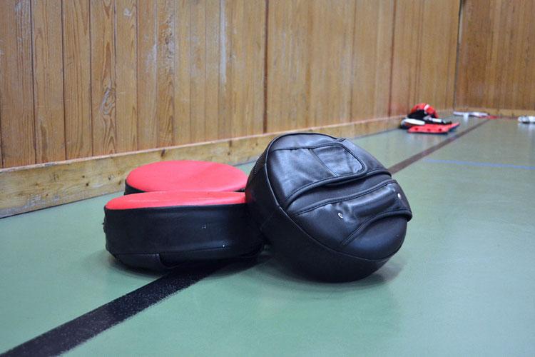 Bild: Taekwondo Pratzen und Schlagpolster