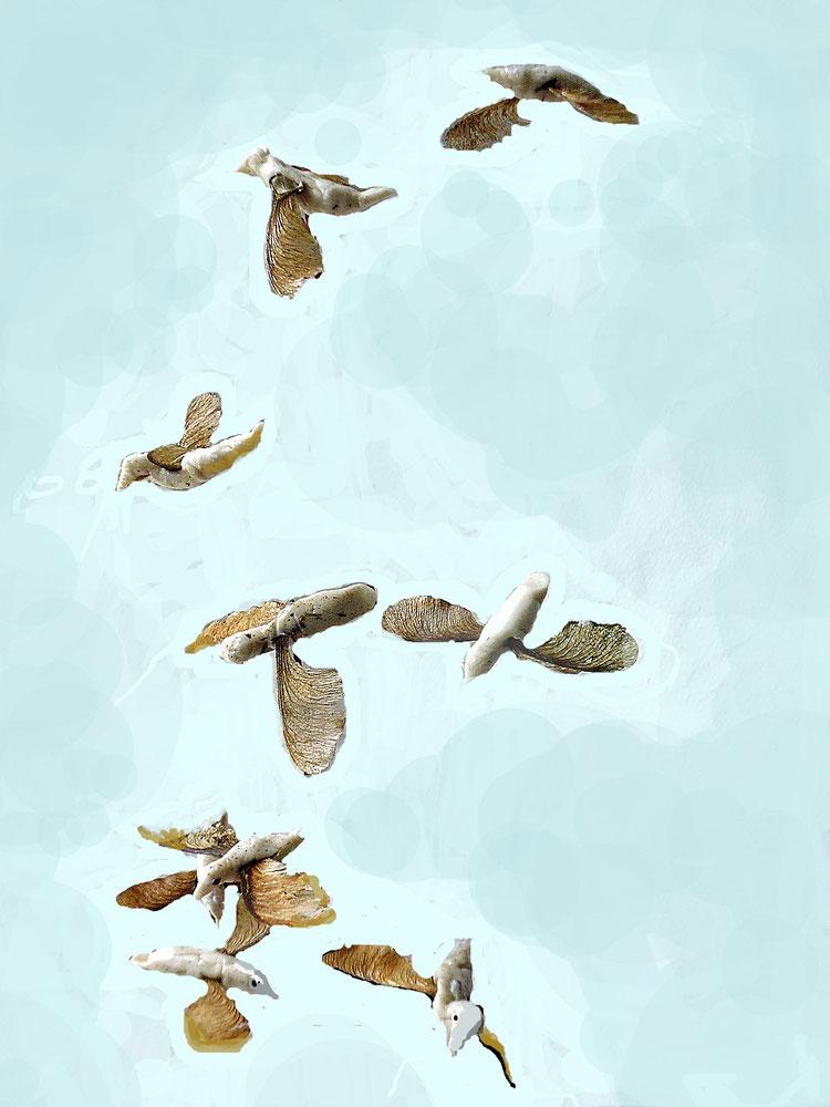 Bild Fliegende Kaugummivögel