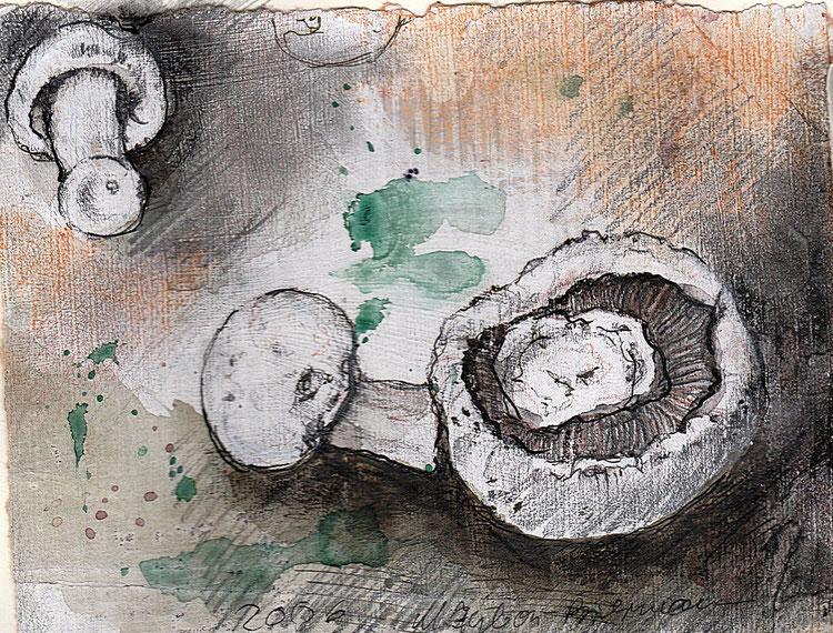 Champignons - mehr als nur Zutat für diverse Kochrezepte: Pilze sind ganz besondere Lebewesen, weder Pflanze noch Tier.