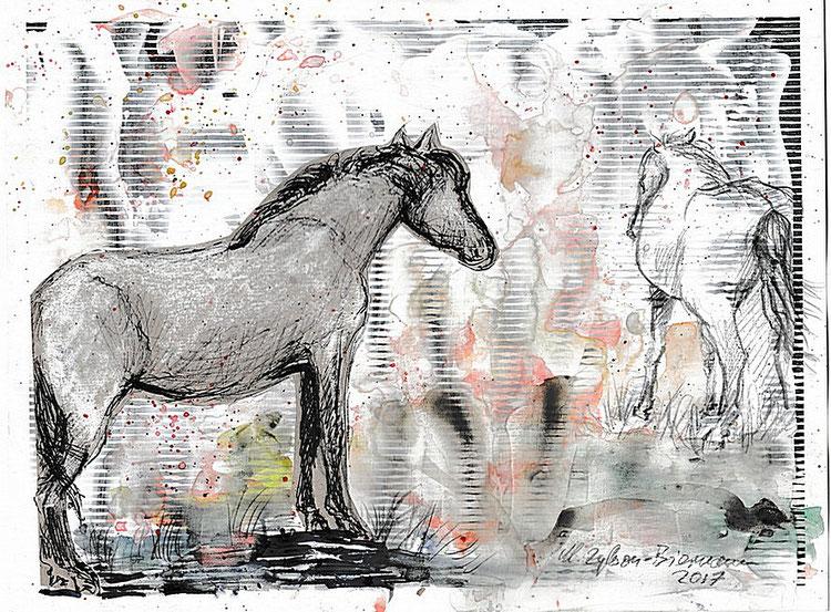 Zwei Pferde, skizziert