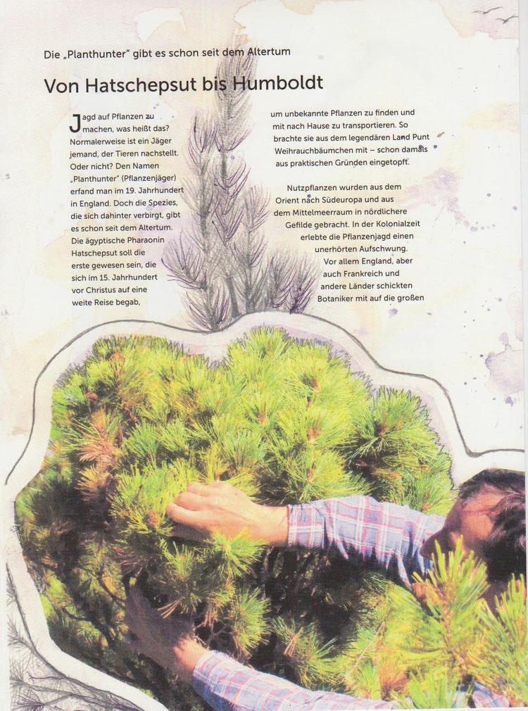 Illustrierte Buchseite