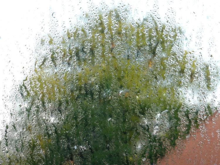 Fenster(-Bild?) nach einem Gewitter