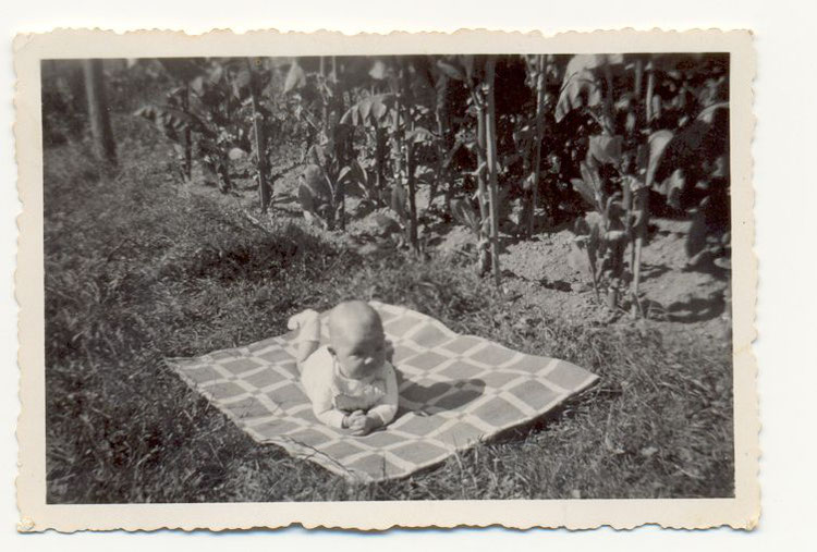 Sommer 1947