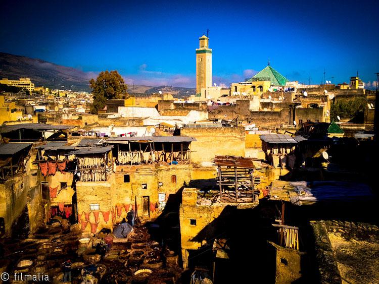 Tintando el cuero. Fez. Marruecos.