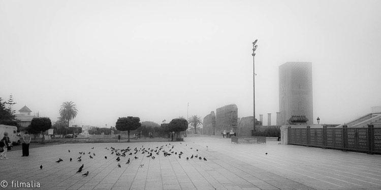 Mañanas Rabatís. Rabat. Marruecos. niebla, tour hassan