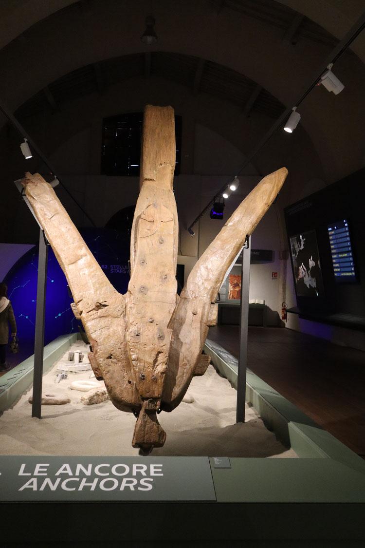 """Ancora lignea della Nave """"A"""", II sec. d.C. - Museo delle Navi Antiche di Pisa"""