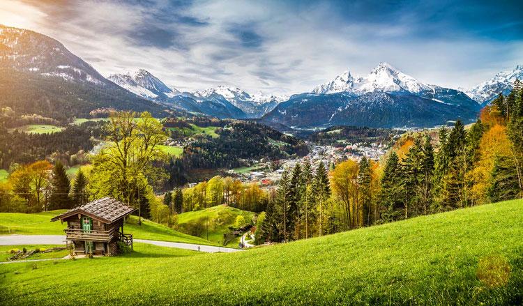 Bild: canadastock/Shutterstock.com