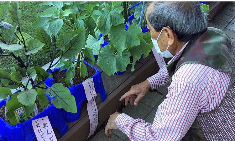 野菜名人への相談を記入した「植木鉢の貼り紙」と「相談に答える動画」を活用して交流を図る。