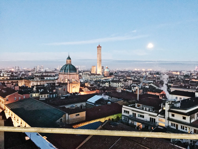 Bologna Italy City Guide ofpenguinsandelephants of penguins & elephants terrazzo di san petronio view