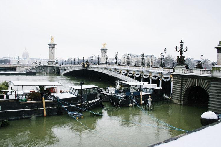Paris France ofpenguinsandelephants of penguins & elephants pont Alexandre 3 bridge