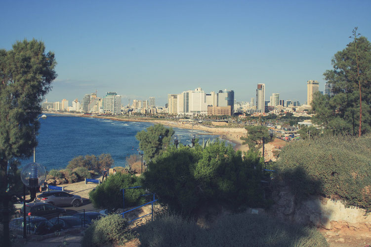 Tel Aviv Israel Asia Middle East ofpenguinsandelephants of penguins & elephants skyline beach view