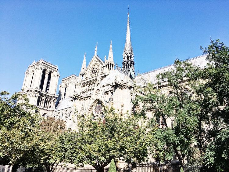 Paris France ofpenguinsandelephants of penguins & elephants Cathedral Notre Dame