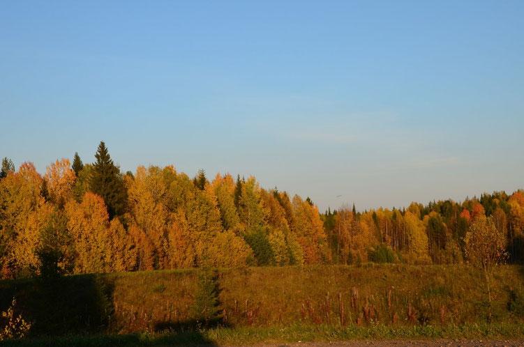 Золотая осень моего края