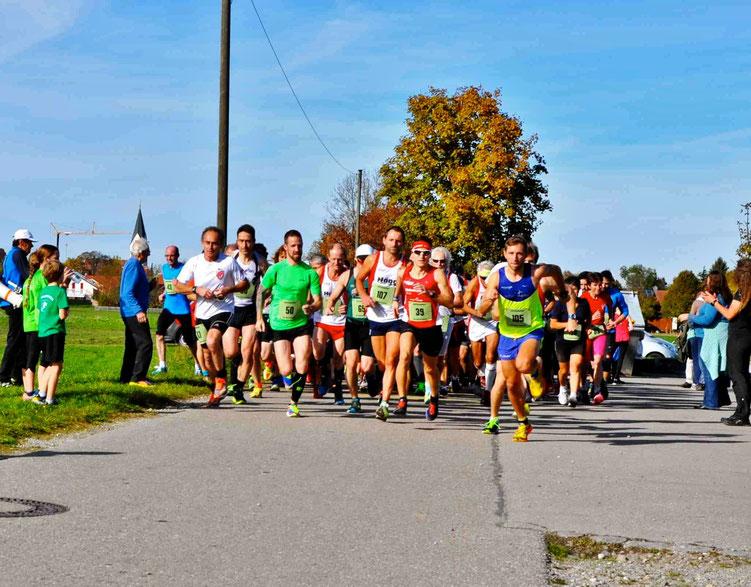 Start zum Gina-Lauf in Jengen mit vollem Antritt - Steffen läuft auf den dritten Gesamtrang (Foto: Nicole C. Becker)