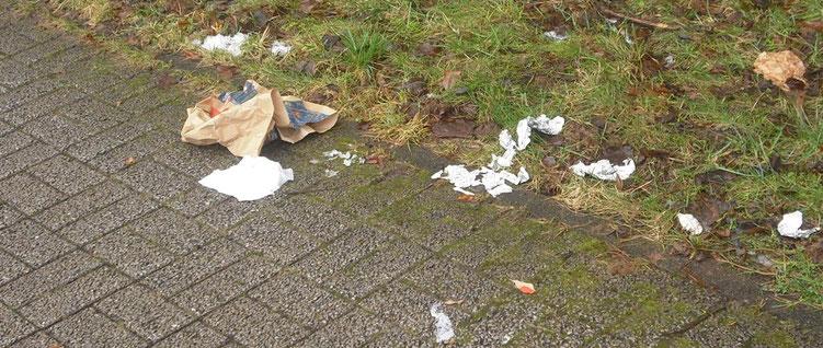 Müllkippe am Wegesrand