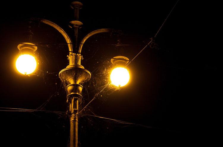 Marion A. - Foto 5 - Am Tage verborgen, des Nachtens gezeig t, feine Fäden in der Dunkelheit...