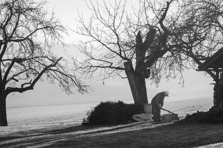 Conny - Foto 9 - Der alte Mann und der Nebel