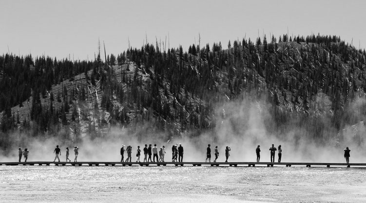 Bea - Foto 16 - geheimnisvoller, zarter Nebel…