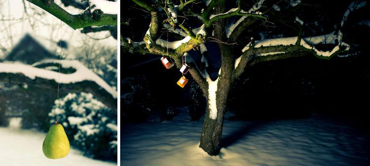 Freiearbeit Wintereinbruch Foto von Fotografin Antje Dopheide