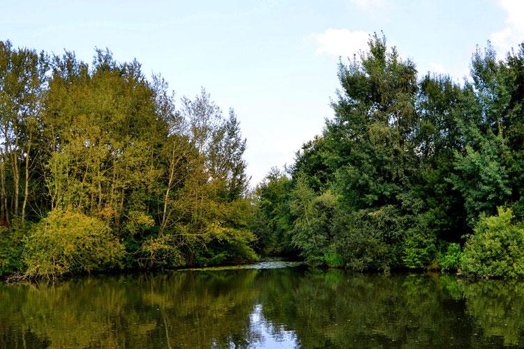 Rund um den Wadeackersee 6