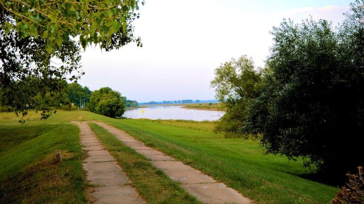 Die Oder bei Fürstenberg