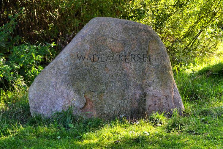 Rund um den Wadeackersee 1