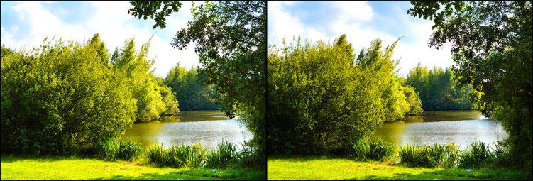 Bremen am Wadeackersee 13