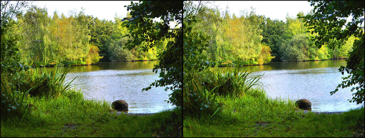 Bremen am Wadeackersee 12