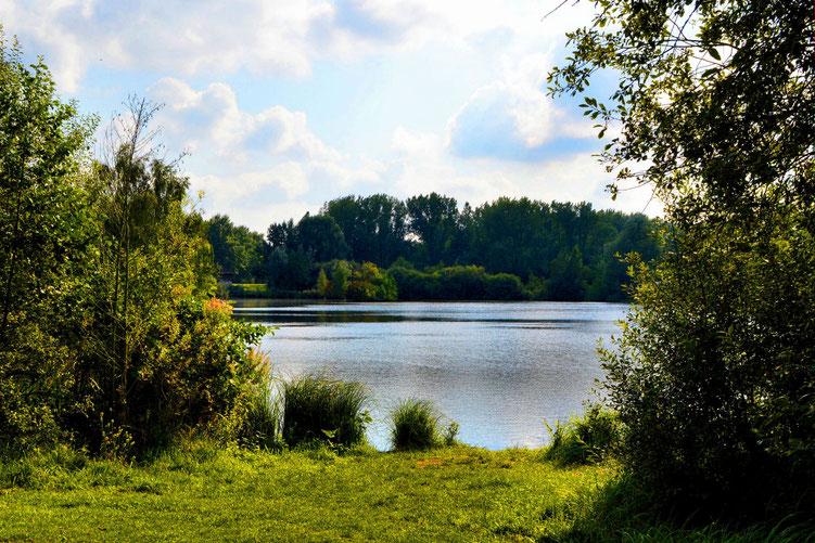 Rund um den Wadeackersee 15