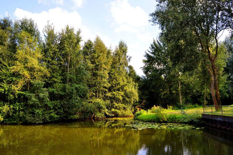Rund um den Wadeackersee 5