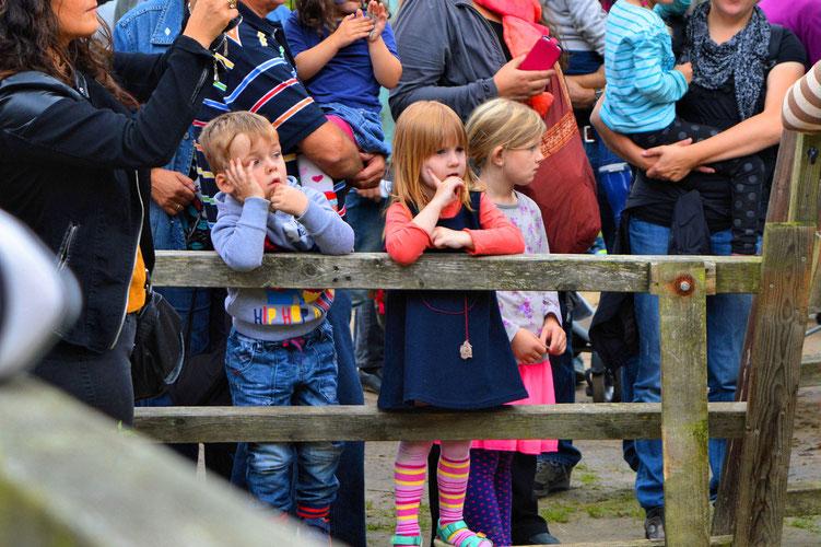 Farmfest der Kinder- und Jugendfarm Bremen 44
