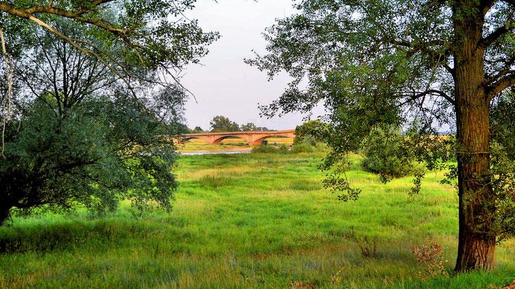 Blick zur alten Oderbrücke