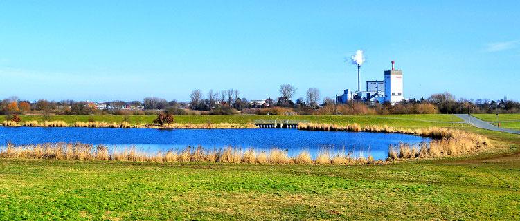 Das Ende des Werdersees