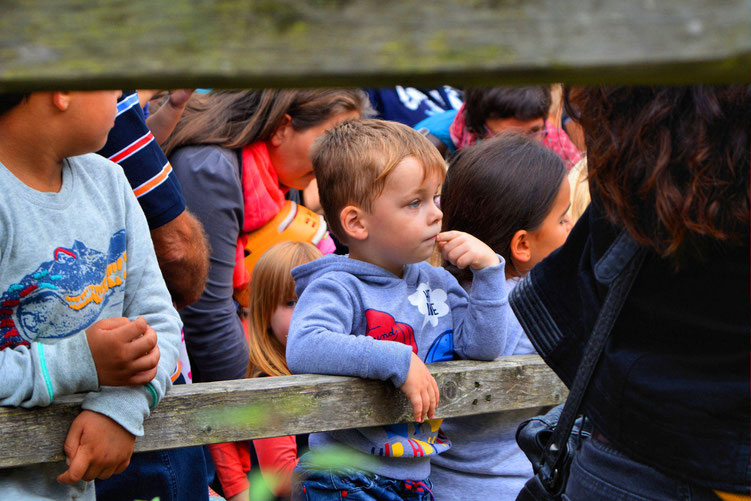 Farmfest der Kinder- und Jugendfarm Bremen 43