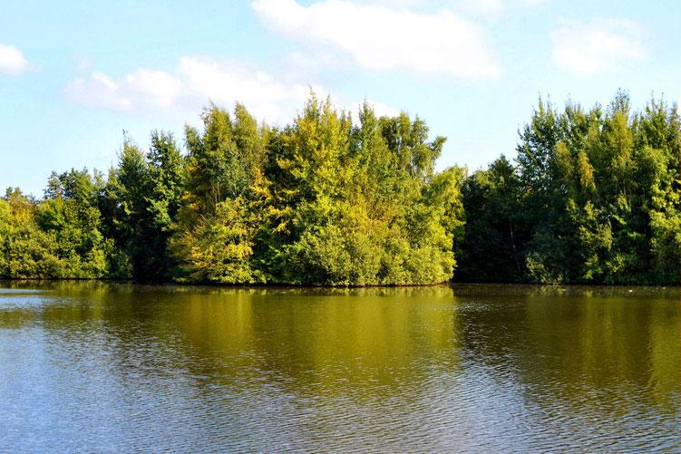 Rund um den Wadeackersee 11