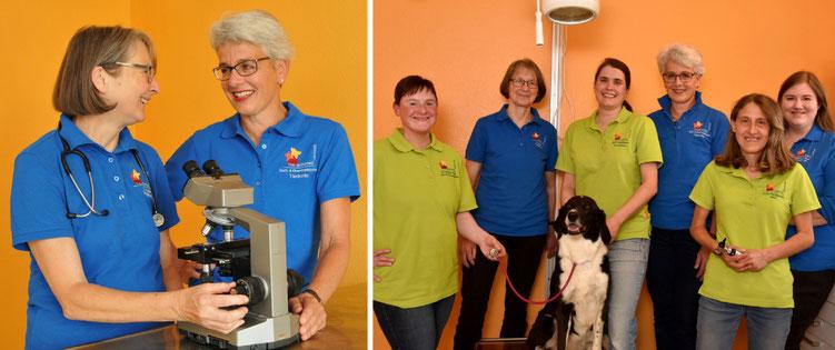 Tierarztpraxis Umkirch, Team