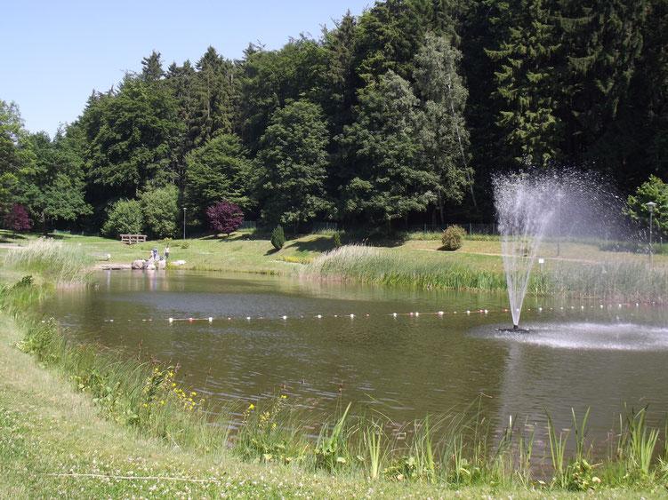 Waldschwimmbad im Kurpark