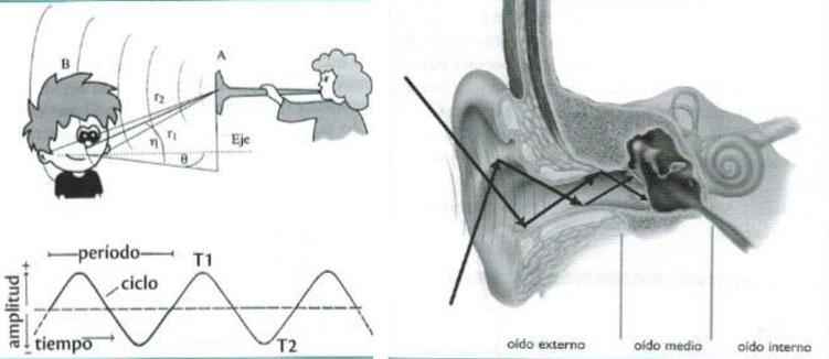 Localización del sonido en el plano horizontal y vertical.