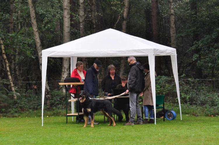 Beurteilung von Bolko von den Beetzsee-Wiesen, dahinter Heidi und René Oppliger, Gabi Kiene, Petra Biallas und dem Mensch-Hund-Team.