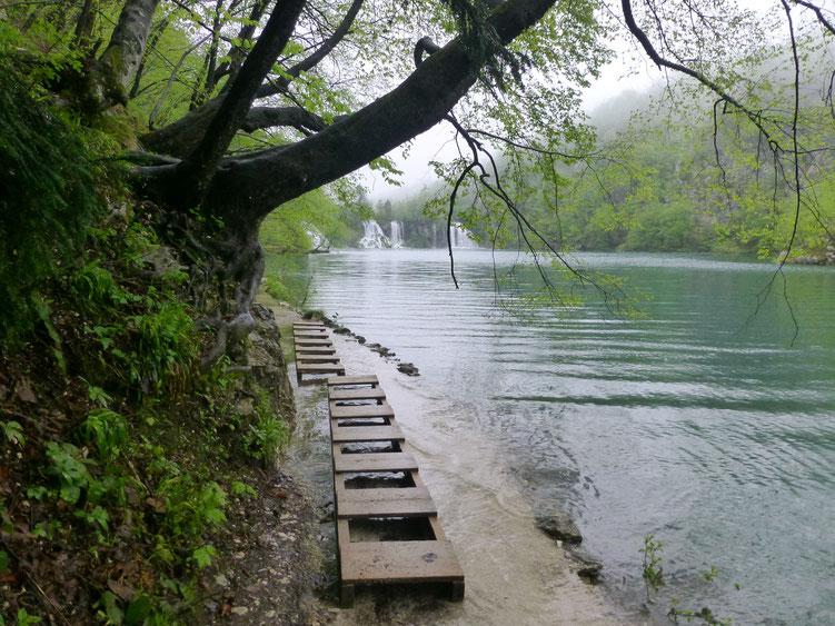 Um 8.00 Uhr in der Früh war ich im Park alleine unterwegs, die Stege überall unter Wasser!