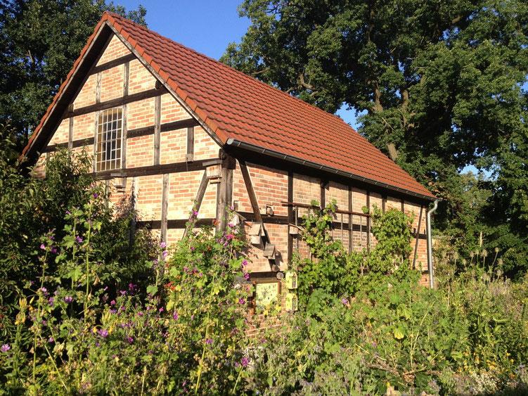 Vorbildlich restaurierte Scheune - mit Wein bewachsen - auf dem Gelände des Naturparkhaus Stechlin in Menz.