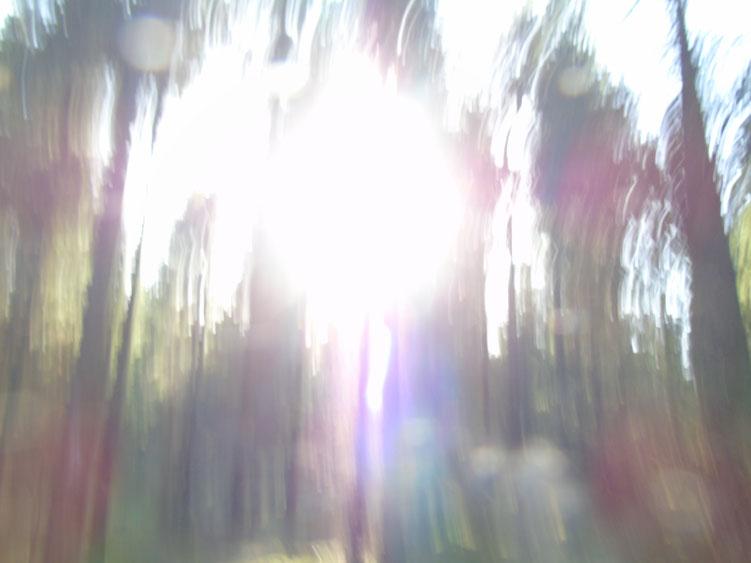 ...rattatazong... Quelle: www.lichtwesenfotografie.com