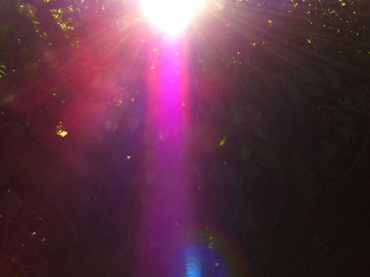 Lichtkanal in magentafarben, Quelle: www.lichtwesenfotografie.com