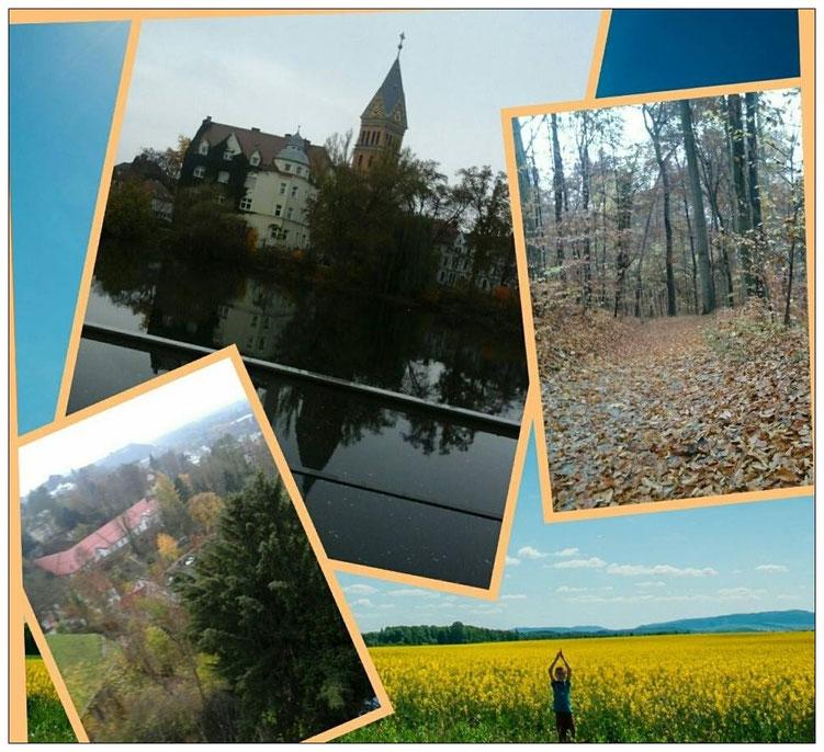 Schöne Ecken, Natur pur - Landshut kann Läufern einiges bieten.
