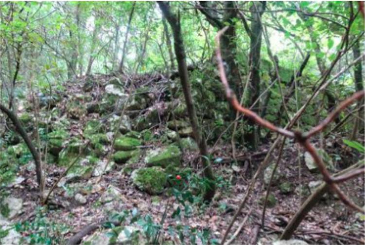 Fig. 5 Culée du pont sur le ravin de Cantofa