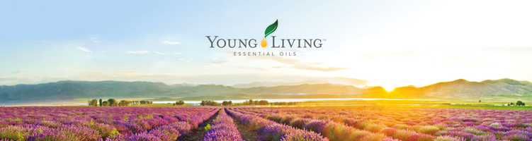 ätherisch ätherisches Öl Öle Young Living essential oil oils